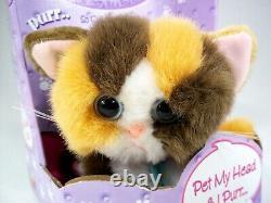 2001 DSI Kitty Kitty Kittens Rascal Plush Toy New In Box White Orange Brown Cat