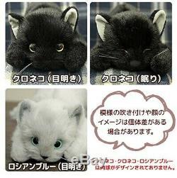 DOUSIN Made in Japan Realistic cat stuffed toy Plush 58cm Blackcat L eyesight
