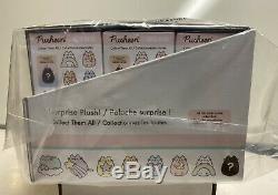 Gund Pusheen Rainbow Series 13 Surprise Plush Blind Box Of 24, New