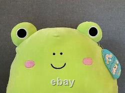 Large Squishmallow Frog Wendy The Frog Squishmallow 16 USA Exclusive Frog