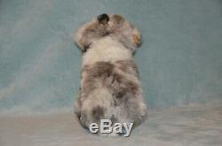 RARE Ganz Webkinz Signature Plush Aussie Australian Shepherd Dog (NO CODE)