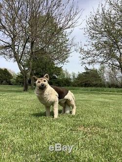 RARE LARGE VTG Applause Avanti Jockline GERMAN Shepard Dog Plush! Stuffed Toy