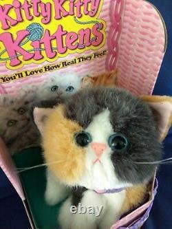 RARE MIB, New Plush, Kitty Kitty Kittens, Orange & White/Calico Kitty, Tyco, DSI