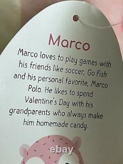 Squishmallow Pink Marco Hedgehog Valentines Plush 8 NWT
