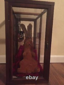 The Velveteen Rabbit Original Plush Rare Vintage Antique 1920s Stuffed Bunny