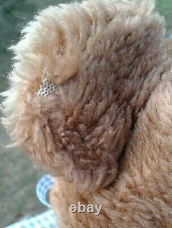 Vtg Rushton Rubber Face Bear Sad 9 Plush Toy Stuffed Animal